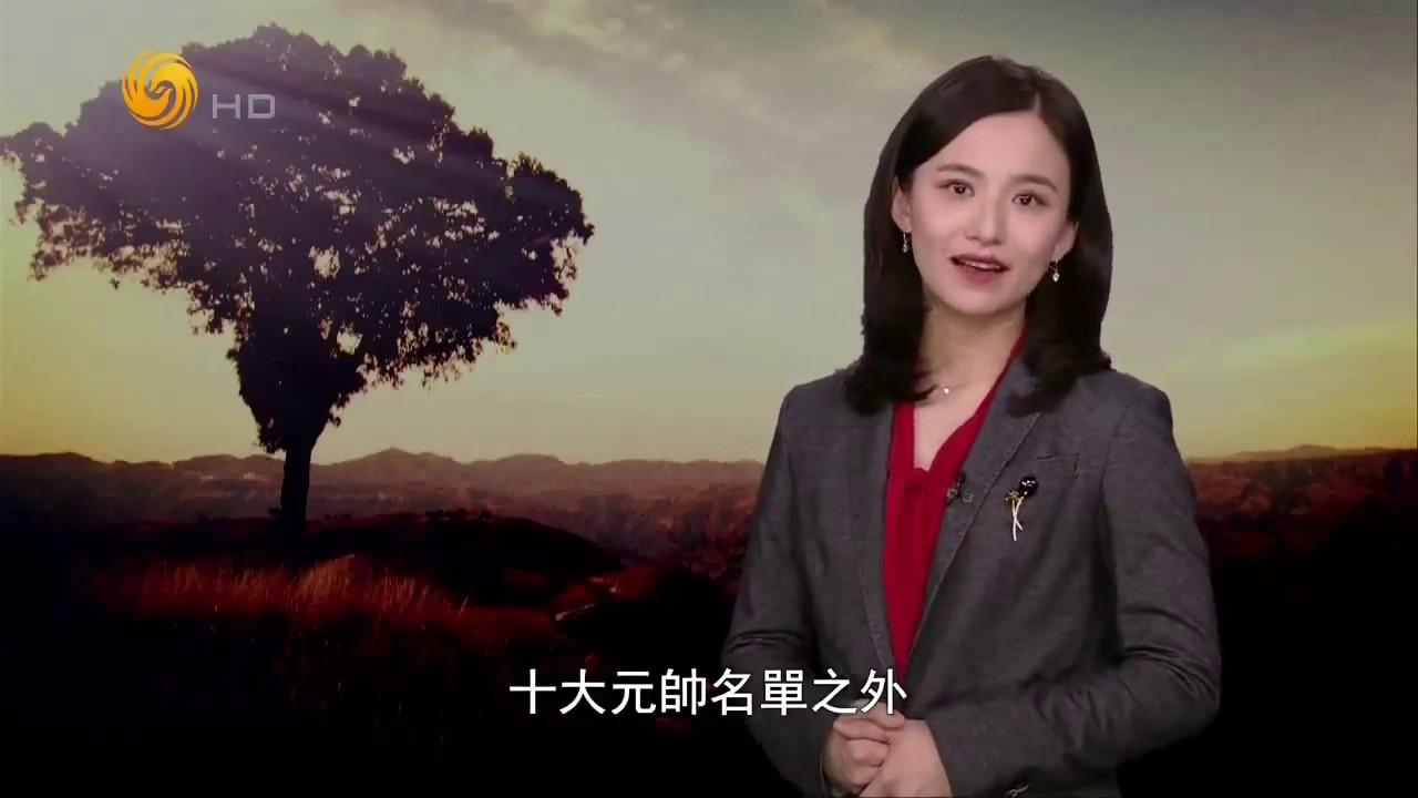 尊前谈笑人依旧:陈毅影像记忆 20180915